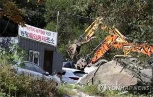 韩国再爆非瘟家猪感染
