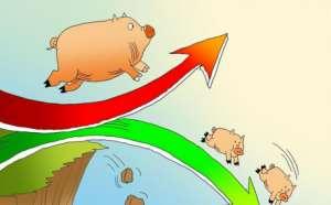 第三次收储来了!总计收储5.3吨,专家判断猪价将上涨